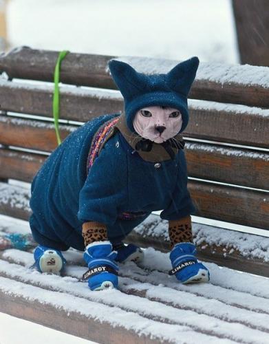 Ist dir kalt, Kleine?