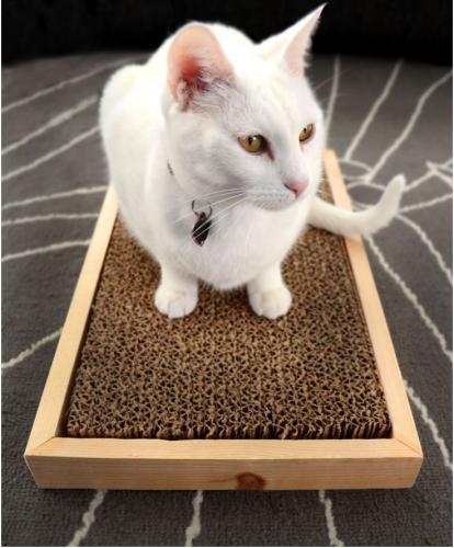 Kratzteppiche aus Karton
