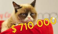 Diese Katze sieht ein Video ihres verstorbenen Menschen und reagiert ganz herzzerreißend