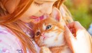 Warum Katzen SCHNURREN ?