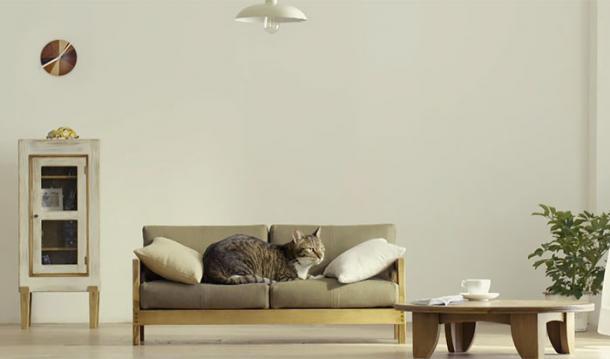 Minimöbel für Katzen