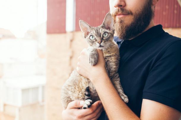 Wir trage ich meine Katze richtig?