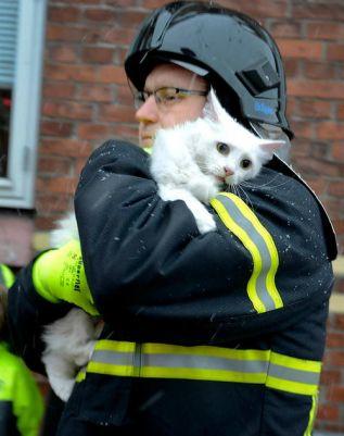 Im dänischen Aabenraa rettete dieser Feuerwehrmann nicht nur Menschen aus den Flammen
