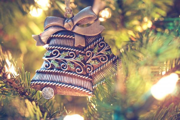 Miezi, lass den Weihnachtsbaum in Frieden!