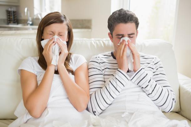 Mein Fell ist nicht Schuld an deiner Allergie