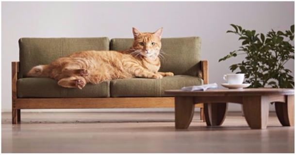 Diese Minimöbel begeistern Katzenfans auf der ganzen Welt