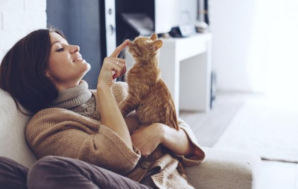 Italien hat begonnen, Katzen in Krankenhäusern zu erlauben