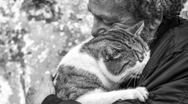 Crazy Cat Gentlemen: Die Fotoserie OF CATS AND MEN wird dein Herz zum Schmelzen bringen...