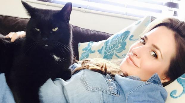 Der absurde Grund dafür, dass keine schwarzen Katzen mehr adoptiert werden, wird dich den Glauben...